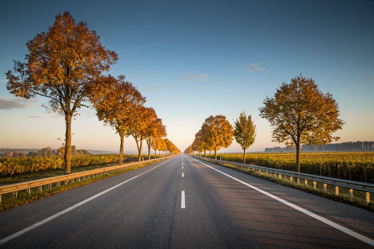 fartbøder, fartkontrol, miljøzoner europa